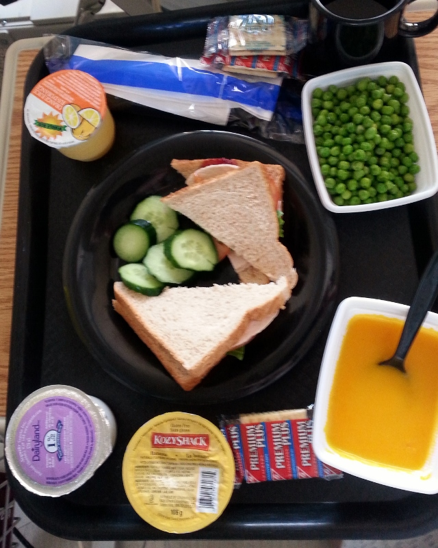 Lunch Chicken sandwich with cucumber, peas, butternut squash soup, milk,orange juice and rice pudding